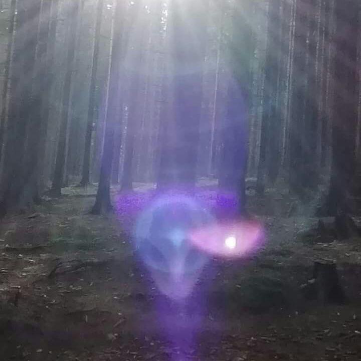 Arcturian Light 2