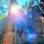 Arcturian Light 6