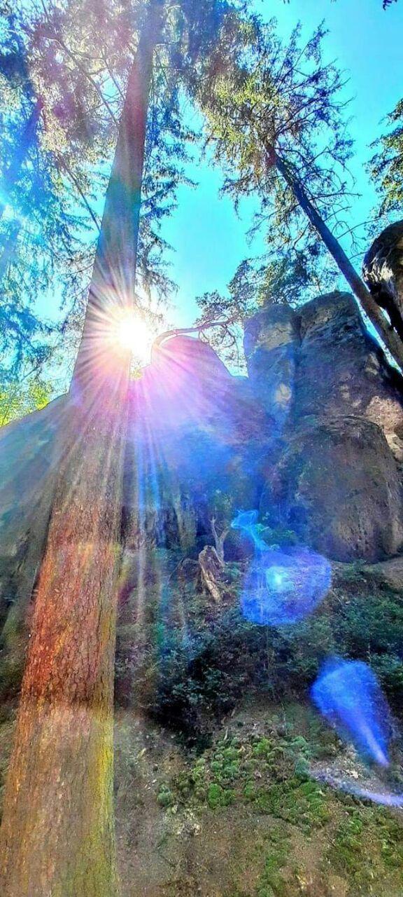 Arcturian Light