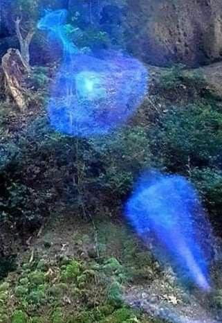 Arcturian Light 4